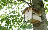 ホテルの庭の巣箱